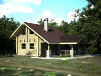 Дом из бревна-154
